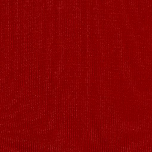 bloed rood pa1